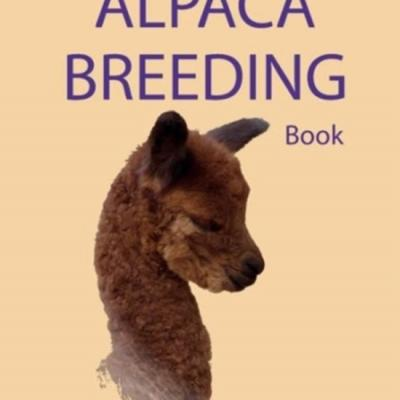 Alpaca breeding