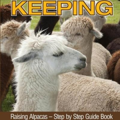 Alpaca keeping