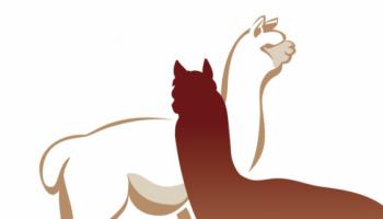 Alpacamundo